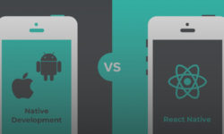 What to choose: <br/>React Native or Native App Development?