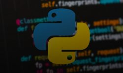 Python vs other <br/>programming languages
